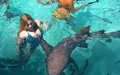 Swim with the Nurse Sharks at Compass Cay
